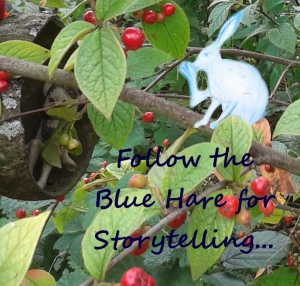 Blue Hare Storytelling