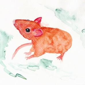 Chinese Zodiac, River of Animals - Rat