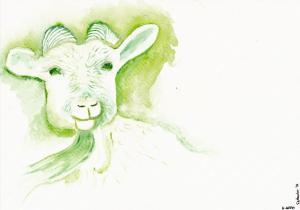 Chinese Zodiac, River of Animals - Goat
